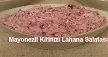 mayonezli kırmızı lahana salatası