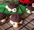 kaplumbağa kurabiye tarifi